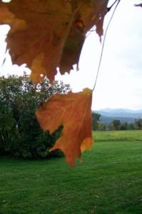 Take in the mountain vistas near the Green Mountain Boys Monument near Bennington, Vermont. (Cheryl Welch | Travel Beat Magazine)