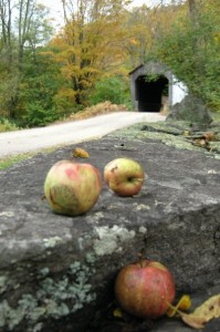 From apple trees to historic bridges, Vermont's Route 100 has you covered. (Cheryl Welch | Travel Beat Magazine)