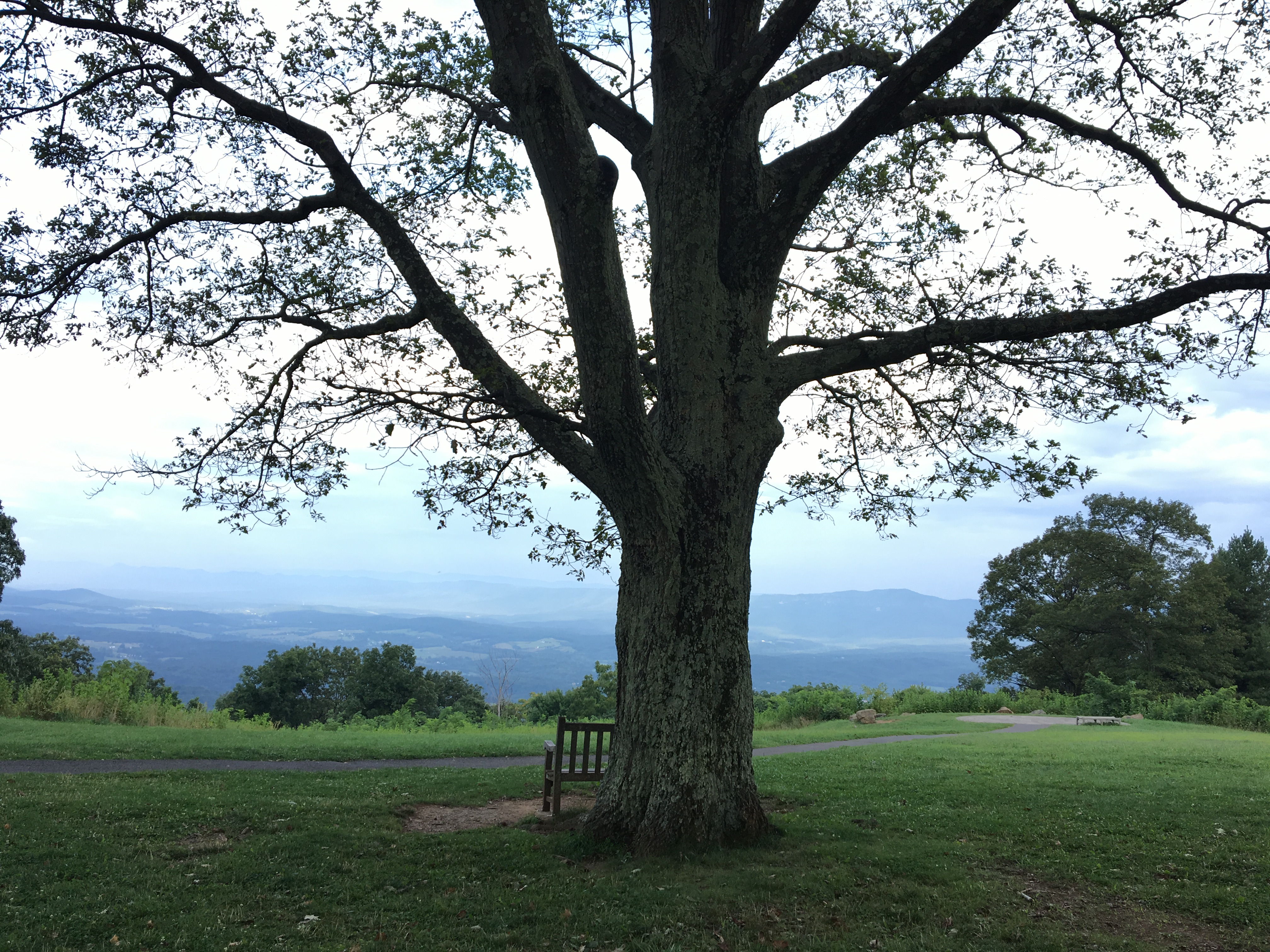 Sit a spell and watch the clouds take shape and roll over the mountains at Shenandoah National Park. (Cheryl Welch |Travel Beat Magazine)