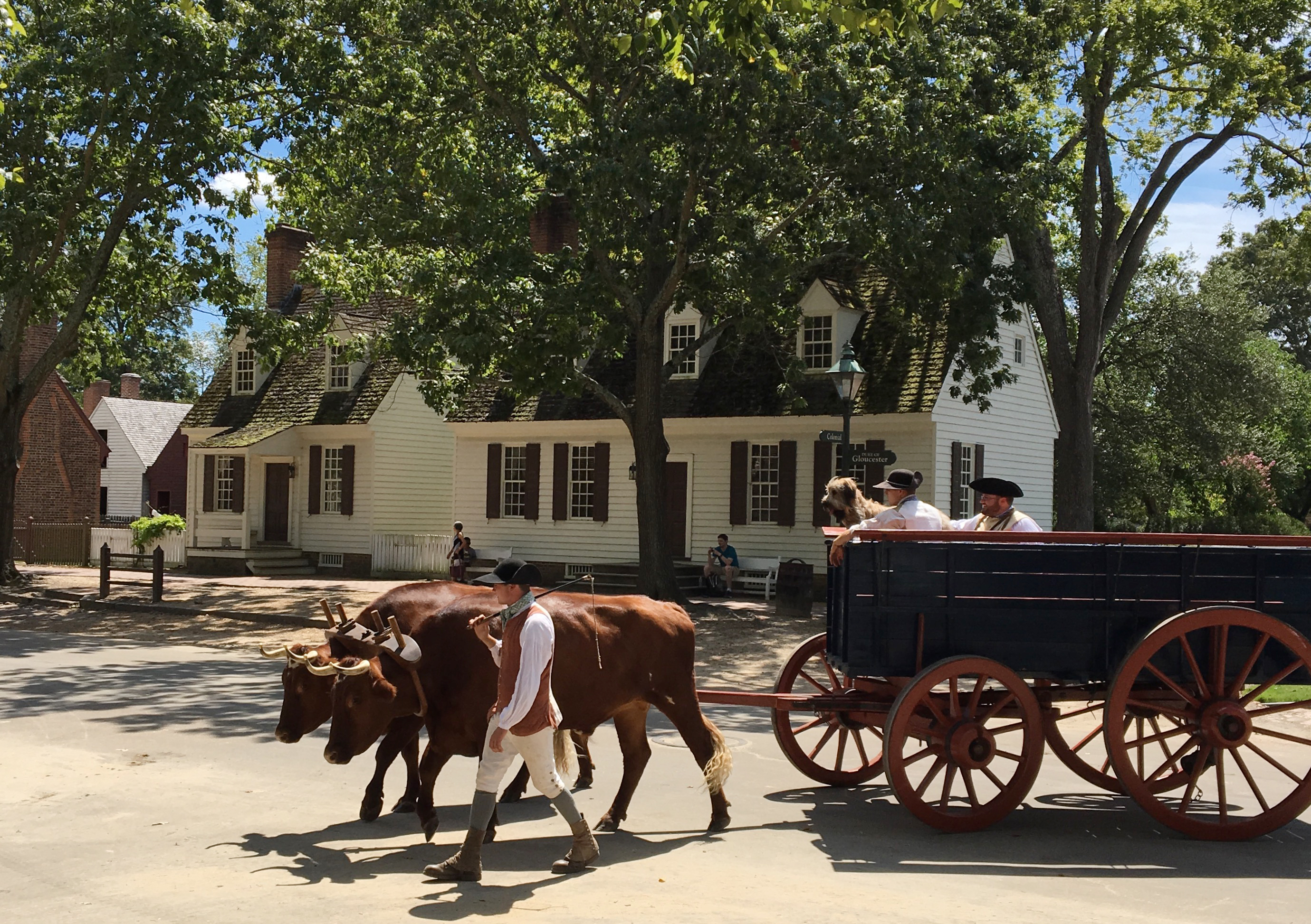 A pooch gets a lift in a wagon along the streets of Colonial Williamsburg. (Kevin Kaiser | Travel Beat Magazine)