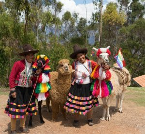 A mountain overlook on the way to Chinchero offers a chance to meet some prized llamas and alpaca. (Kevin Kaiser | Travel Beat Magazine)